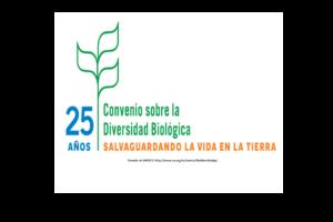 Logo Dia Int Div Biol 2018