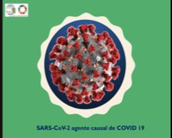 Charla Coronavirus CEGICEP MdP 10_13 mar2020w